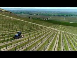 Machinery Minute: T4 F/V Vineyard and Orchard Tractors
